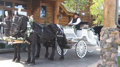 Moonlight Carriage Company LLC