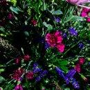 130x130 sq 1356722485062 flowers