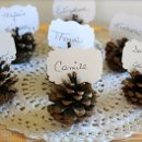 Escort Cards and Table Seating Chart