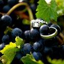 130x130 sq 1357333554611 wedding36