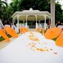 130x130_sq_1350133425846-wedding41