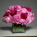 130x130 sq 1357597482571 trellisflowers3404