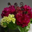 130x130 sq 1357598919585 trellisflowers3424