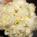 130x130 sq 1357604593892 trellisflowers3461