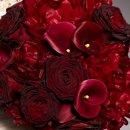 130x130 sq 1357605115004 trellisflowers3475