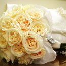 130x130_sq_1358571030634-creamroses