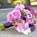 130x130 sq 1390233028152 purple bridesmaid bouquet2 log