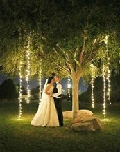 220x220 1449855788 0cd08beeca7ef485 calderon wedding lite