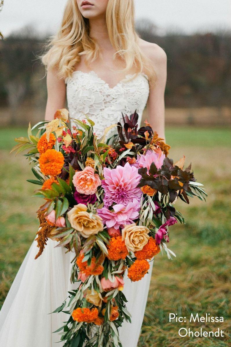 Munster Rose Flowers St Paul Mn Weddingwire