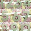 130x130 sq 1353473018917 allnumbers