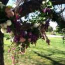 130x130 sq 1395979749355 perri handley ceremony flower
