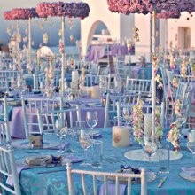 220x220 sq 1357778447120 eliteeventsathenswedding18