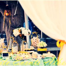 220x220 sq 1361292271972 lemonweddingak13