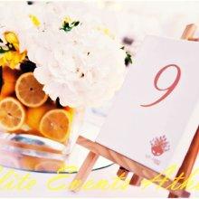 220x220 sq 1361292295957 lemonweddingak15