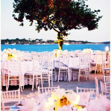 220x220 sq 1361292328620 lemonweddingak18