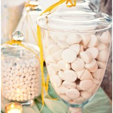 220x220 sq 1361292391663 lemonweddingak29