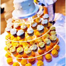 220x220 sq 1361292424547 lemonweddingak40