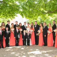 220x220 sq 1451762769099 lindsey danny wedding entire wedding party