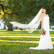 220x220 sq 1388102570806 south carolina weddings 4