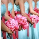 130x130 sq 1354152411431 bridesmaidsteal