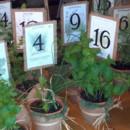 130x130 sq 1378727781713 herb plants