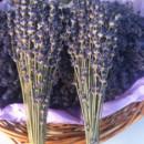 130x130 sq 1378727830761 lavender