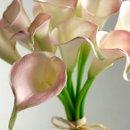 130x130_sq_1353477802568-springlightpinkcalla