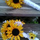Mini sunflower with babies breath boutonniere