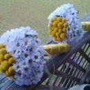 130x130_sq_1365305210485-bouquet-yellow-billy-buttons-mini-daisy-bridal-and-bridesmaid