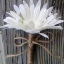 130x130 sq 1367771390026 daisy white twine5