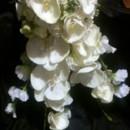 130x130 sq 1369633372705 bouquet prisicile5