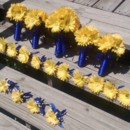 130x130 sq 1370232175899 daisy yellow set6