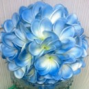 130x130_sq_1385712972605-plumeria-blue-