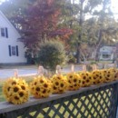 130x130 sq 1385713004731 sunflower kissing ball 7in burlap