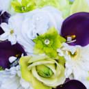 130x130 sq 1416890552906 kassandra bride purple green feather photo