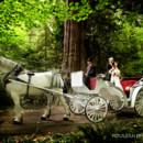 130x130 sq 1443634066920 horse carriage wedding portraits stanley park wedd