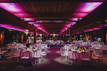 Minneapolis wedding venues reviews for 438 venues abulae junglespirit Image collections