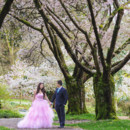 130x130 sq 1428224153969 sim wedding fiona kevin stanley park cherry blosso