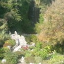 130x130 sq 1388719675150 japanese tea gardens bridge  waterfal