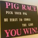 130x130 sq 1482247679388 pig sign