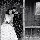 130x130 sq 1356319062222 weddingwire07