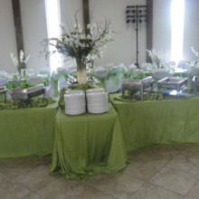220x220 sq 1504215998823 buffet table green