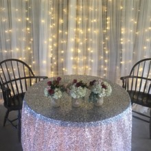 220x220 sq 1504377959536 other silver seq head table lighted backdrop
