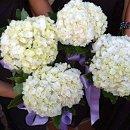 130x130 sq 1357174636108 flower3