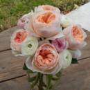 130x130 sq 1374542921490 garden rose 2