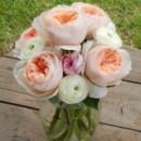 130x130 sq 1374542946707 garden rose 3