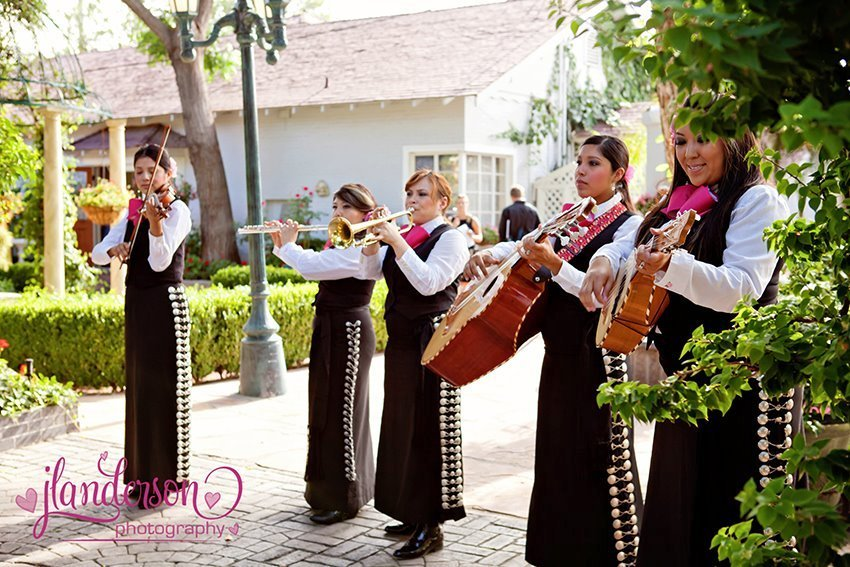Mariachi Rubor - Band - Avondale, AZ - WeddingWire