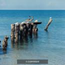 130x130 sq 1369927352860 beach 2