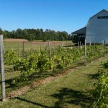 Izzos White Barn Winery Venue Cayuga Ny Weddingwire