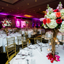 220x220 sq 1449685618714 hyatt regency greenwich wedding harirenu 5339